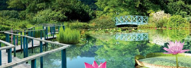 Les jardins d'eau de Carsac-Aillac, en Dordogne