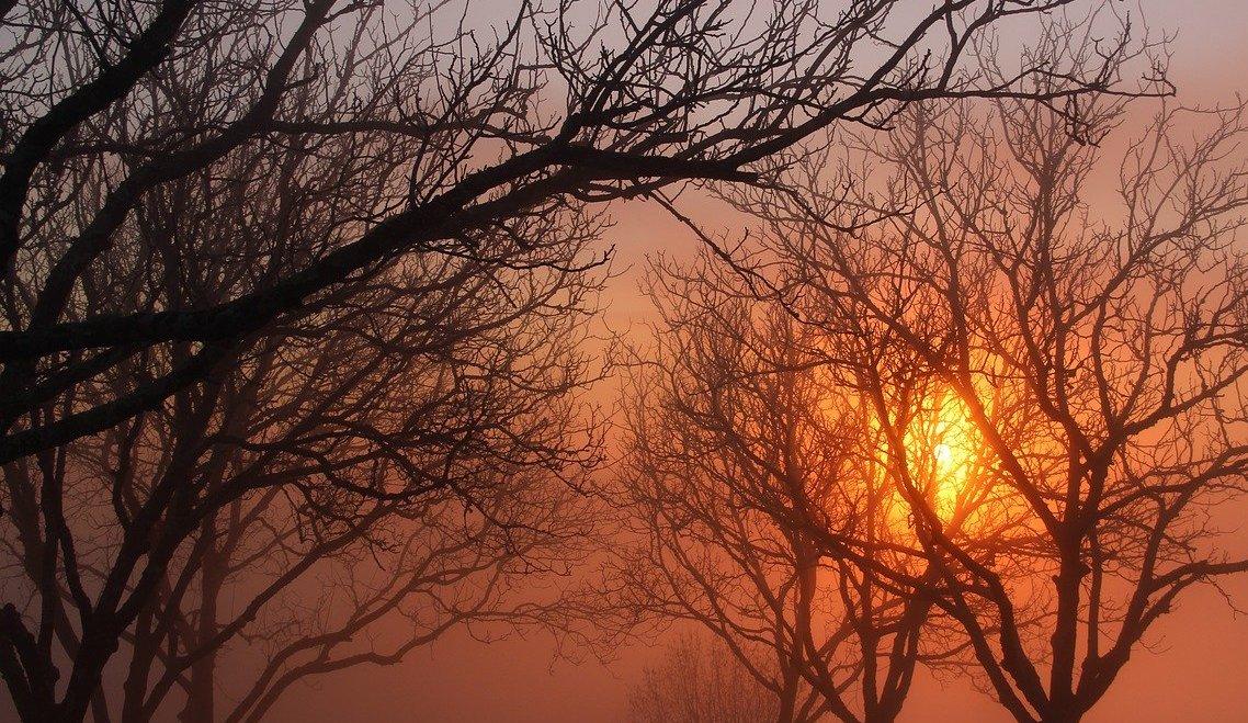 hiver_perigord_paysages.jpg